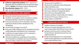 Amazing Latest Professional Resume Format 2015 For Experienced