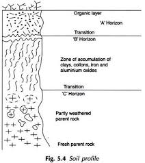 essay on soil formation classification and conservation essay on classification of soils