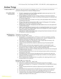 Hairstylist Resume Samples Free Download Resume For Retail Store