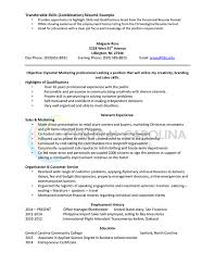 What Is A Combination Resume Resume Example Of Skills