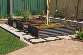 elevated raised garden beds. Elevated Raised Garden Beds Ideas For Growing Corrugated Iron Vegetable R