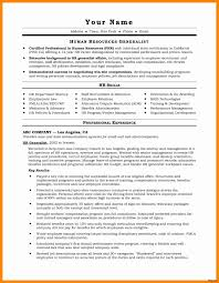 Sample Sales Resumes Lovely It Professional Resume Best Resume For