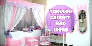 Little Girl Canopy Beds Cute Bedroom Ideas And Adorable For Toddler ...