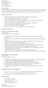 Technology Quality Analyst Resume Resume Sample Web