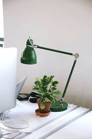 small plants for office. desk plant no sunlight small light office plants care tips and recommendations from the sill low plantsdesk for