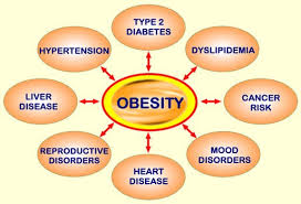 Online Weight Loss Charts Weight Loss And Weight Gain