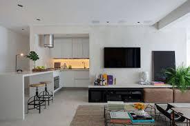 Small and Refined Contemporary Apartment in Rio de Janeiro