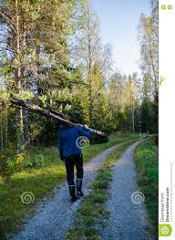 Walking Logs Young Strong Man Carrying Logs In The Woods Stock Photo Image Of