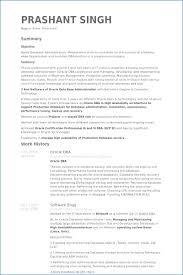 Shidduch Resume Example | Generalresume.org