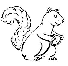 Squirrel Coloring Sheet Squirrel Coloring Page Squirrel Coloring
