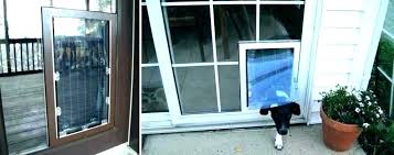 doggy door for glass sliding pet locking