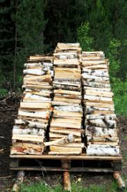 The 5 Best Choices For Firewood In Ontario
