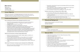 Entry Level Help Desk Resumes Entry Level Information Technology Resume Entry Level Resume