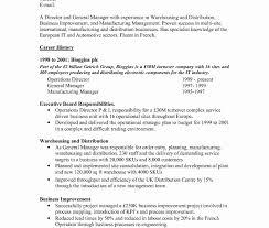 Resume Templates Functional Template Google Docs Word Free Cv Sample ...