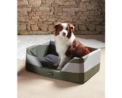 heated dog bed to warm your pooch