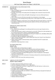 Sample Executive Resumes Planning Executive Resume Samples Velvet Jobs 5