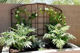 Small Picture Trellis Designs Garden Trellis Designs Metal Garden Trellises