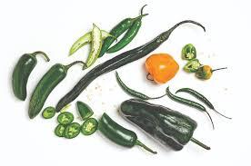 los 7 tipos de chiles verdes en méxico