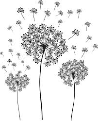 dandelion wall art decal kit