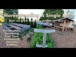 1 acre homestead how we micro farm