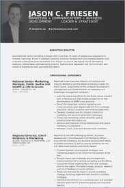 Marketing Director Resume – Globish.me