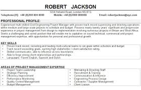 Beautiful Resume Format in Word Free Download
