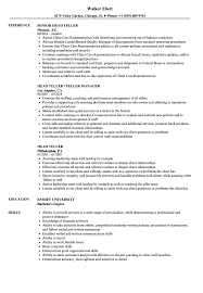 Head Teller Resume Head Teller Resume Samples Velvet Jobs 1
