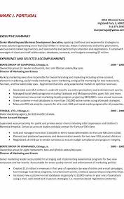 Resume Summary Example Inspiration Resume Summary Example Formatted Templates Example