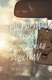 in pulphead essays curiosity is the common th npr pulphead