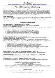 Team Leader Skills For Resume Resume Work Template