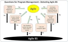Disa Cio Org Chart How Fake Agile At Dod Risks National Security