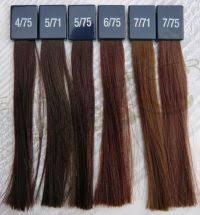 Pure Evolve Colour Chart Silver Hair Color Chart