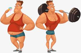 Bodybuilding Chart Free Download Bodybuilder Male Fitness Weightlifting Strong And