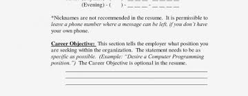 What's A Good Summary To Put On Your Resume Resume Information Ideas New What To Put In Summary Of Resume