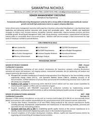 Executive Resume Examples 2017 C Level Executive Resume Samples Rimouskois Job Resumes 58