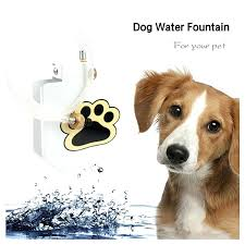 new dog sprinkler high quality durability trouble free outdoor cat pet drinking water fountain in feeding