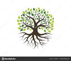 Arbol Genealogico Creativo Arbol Genealogico Creativo En Ingles Vector De Plantilla
