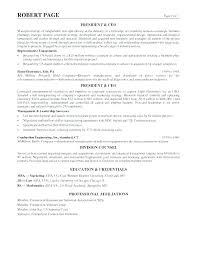 Professional Statement Examples Mesmerizing Resume Summary Statement Example Of Professional Examples For