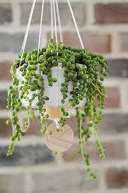 Easy DIY Hanging Planter Tutorial on The Home Depot Blog