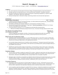 Resume Tips Bcg Example Good Resume Template