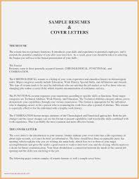 Download 57 Resume Format Template Free Professional Template Example