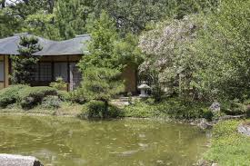 japanese garden in hermann park turns 25