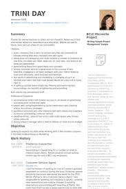 Freelance Copywriter Resume samples