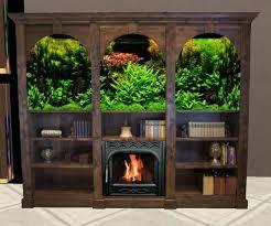 Bookcase Aquarium Fireplace bois 1. Bookcase_aquarium_fireplace_bois_1_001