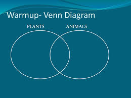 Plant And Animals Adaptations Venn Diagram Introduction To Plants Ppt Download