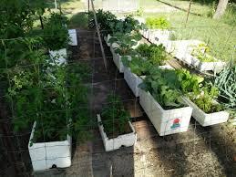 home diy hydroponic garden