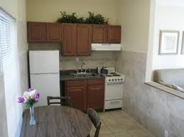 ... Medium Size Of Studio Apartment Kitchen Design Ideas Therapy Cabinets  Decor College Essentials Kitchenette Studio Apartment