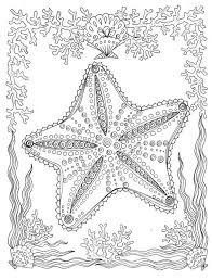 Starfish Coloring Page Noordzeemeermin