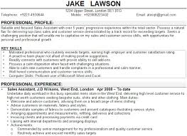 Cv Profile Sales Assistant Cv Example1 Gif Think Down Town Kc