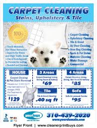 Cleaning Flyer 8 5 X 11 C0005